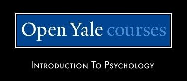 Automotive Engineering yale university courses offered