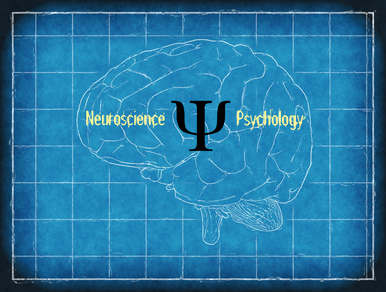 Excellent article on the role of neuroscience in psychology by Dr. Kevin Fleming.