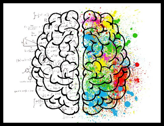 Left-Brain Right-Brain Myth