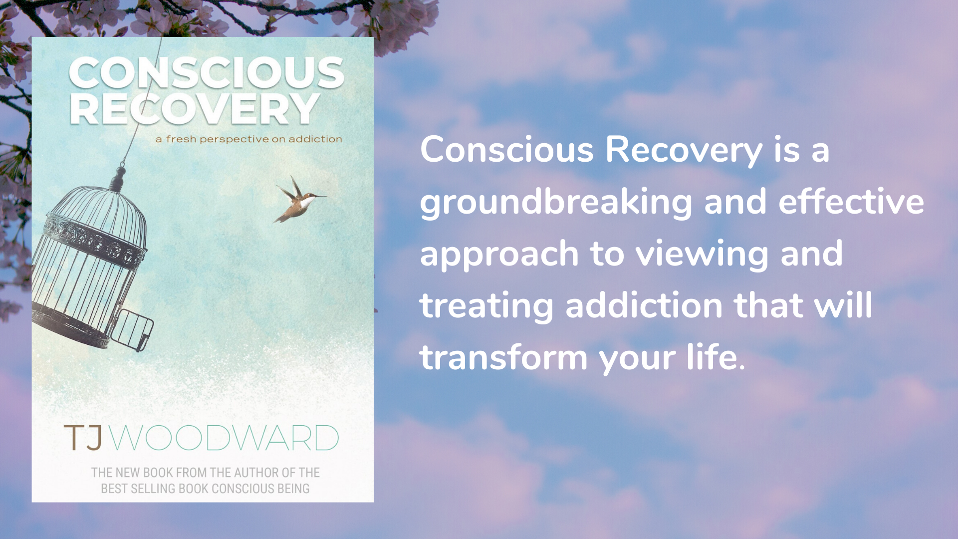 Conscious Recovery: A Fresh Perspective on Addiction by TJ Woodward