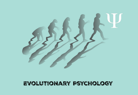 the evolution of psychology Evolutionary psychology is a theoretical approach in the social and natural sciences that examines psychological structure from a modern evolutionary perspective it seeks to identify which human psychological traits are evolved adaptations - that is.