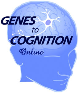 Genes to Cognition