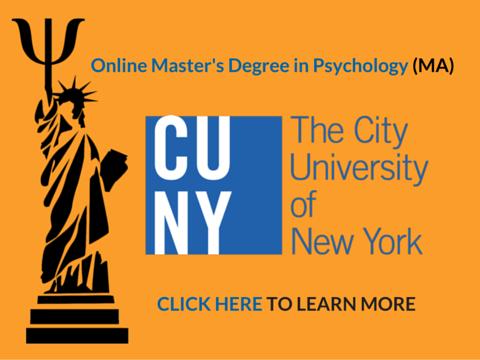 degree level psychology essays