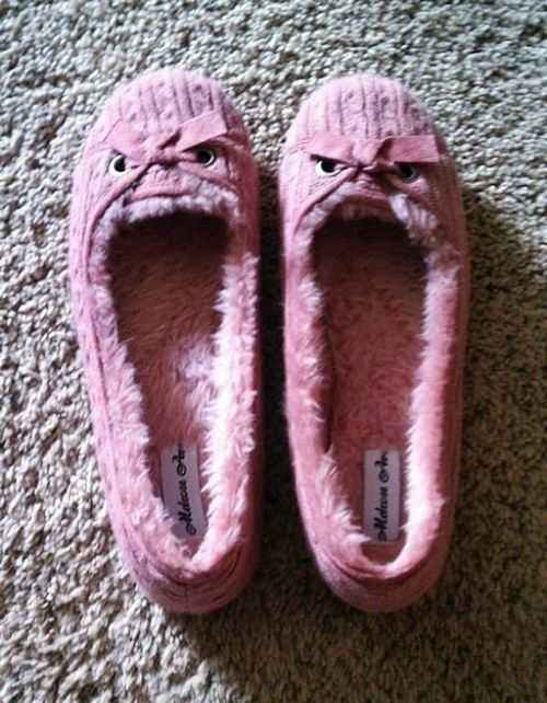 Pareidolia The Angry Slipper Twins