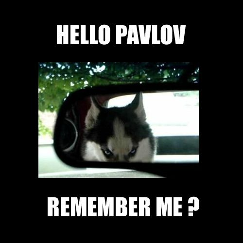 He is Pavlov and We're The Dogs': How Associative Learning Really Works in Human Psychology