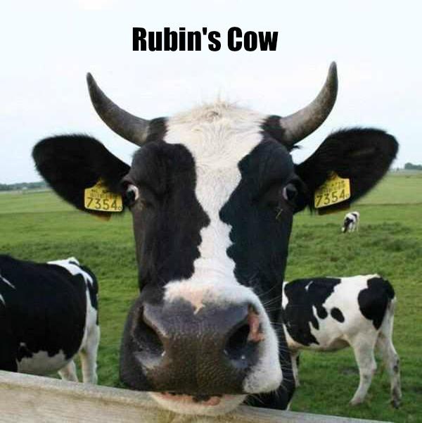 Rubin's Cow