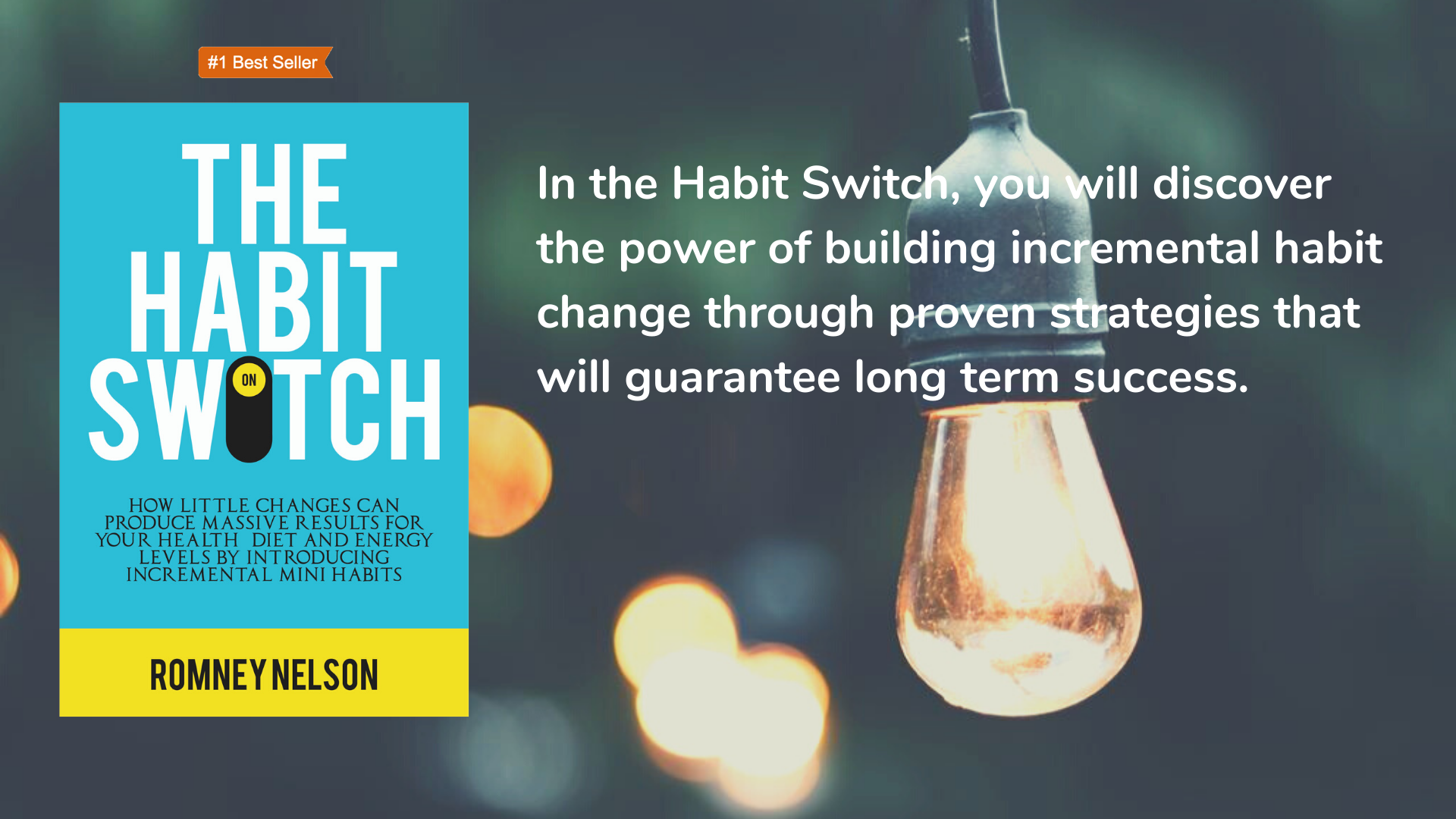 The Habit Switch by Romney Nelson