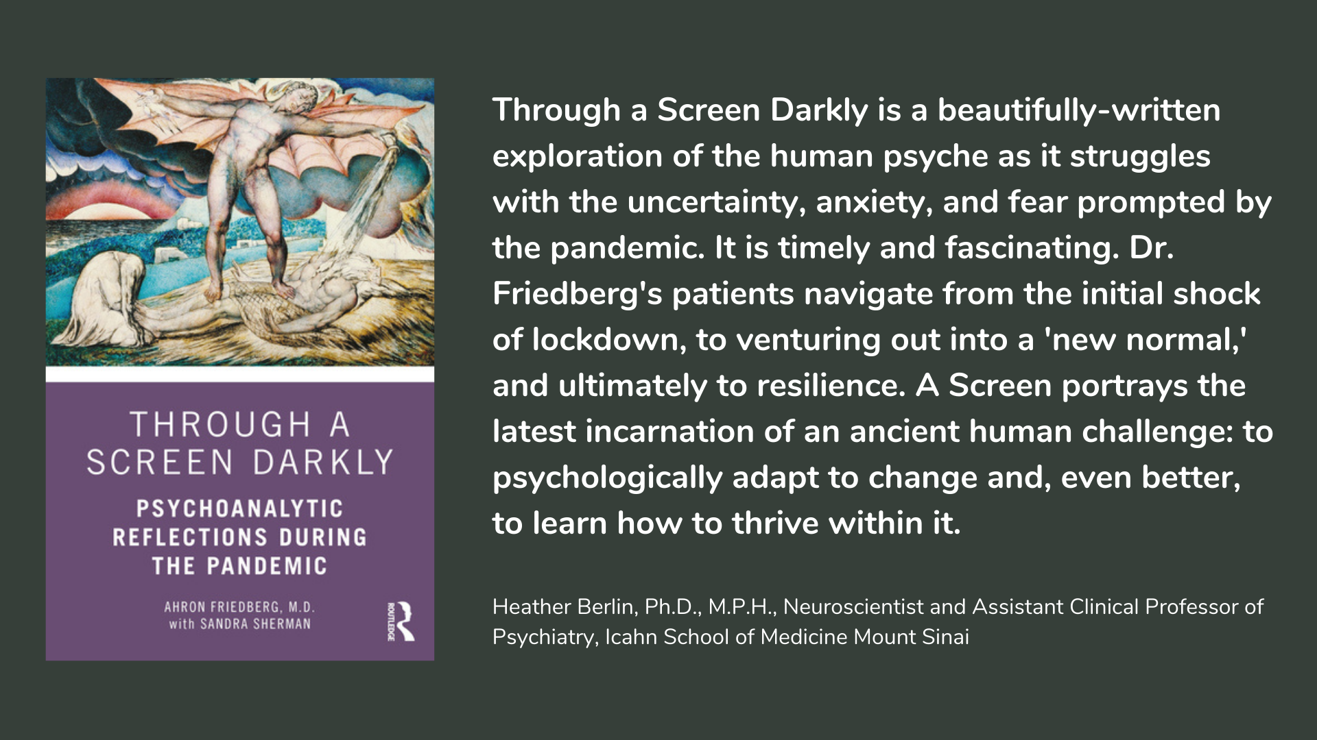 Through a Screen Darkly Psychoanalytic Reflections During the Pandemic. Book cover and description