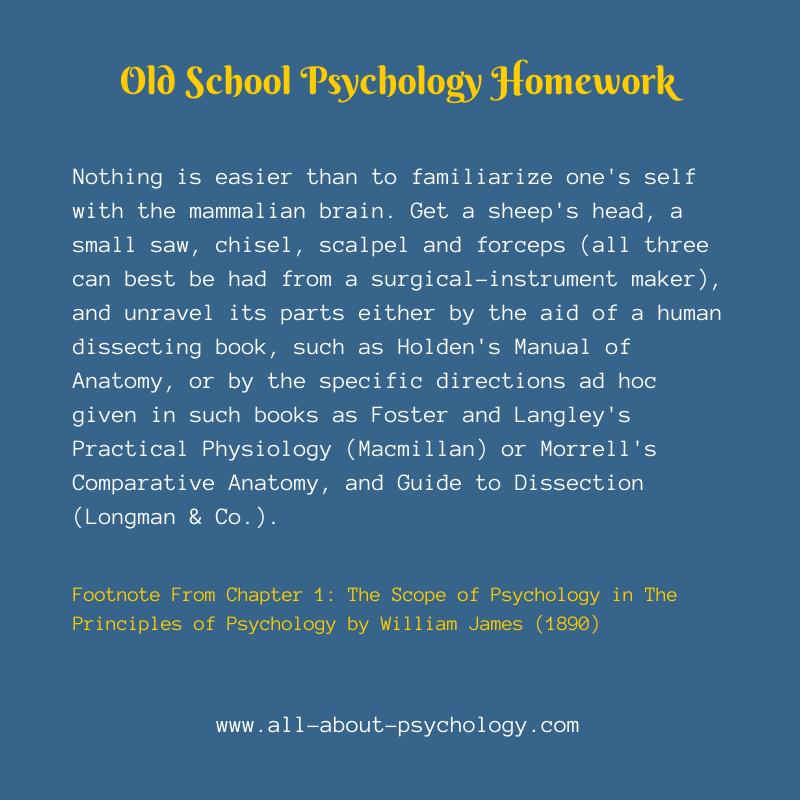 Psychology Homework William James Style