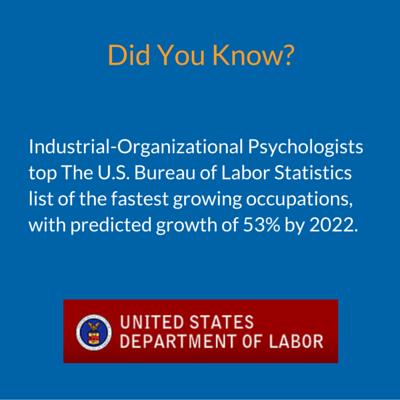 Industrial-organizational psychologists
