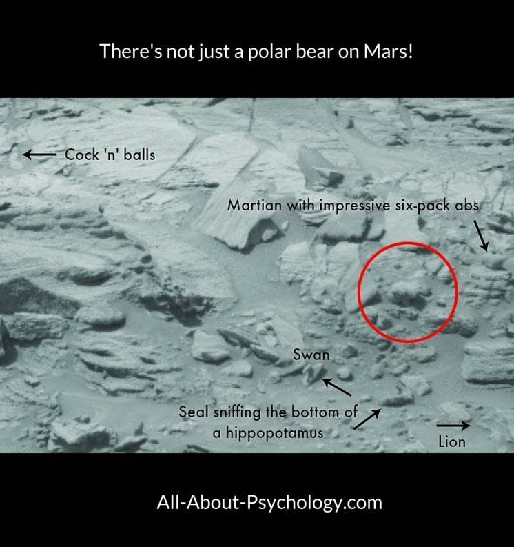There's More Than Just A Polar Bear on Mars!
