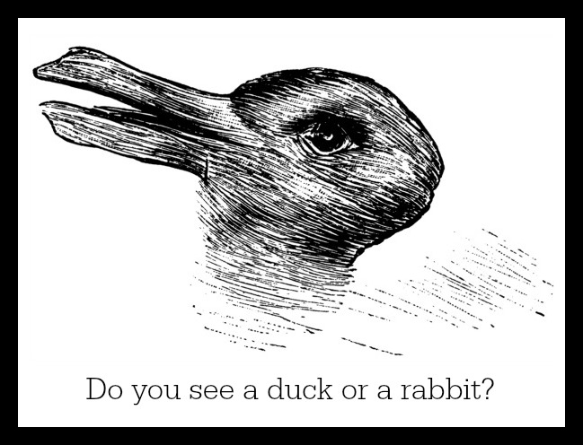 Duck Rabbit Illusion